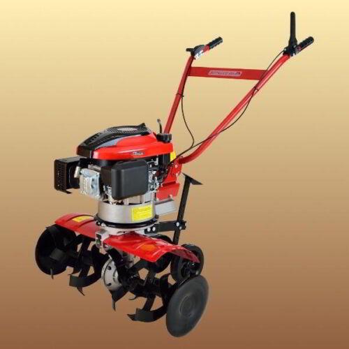 Agrimotor Rotalux 52A B40 Briggs & Straton 4 LE